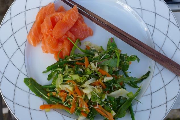 Sashimi and raw food salad